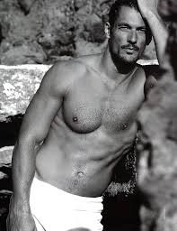 david Gandy, rich models